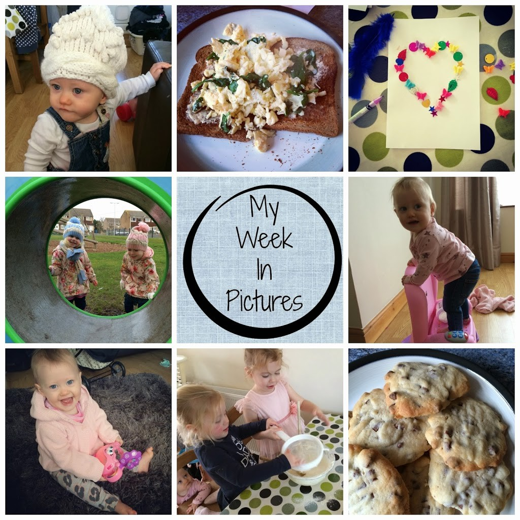 My Week In Pictures #1