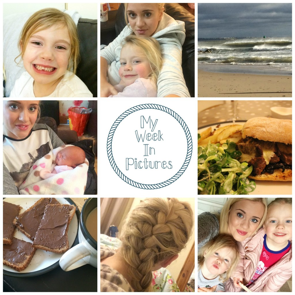 my week in pics 2016 3