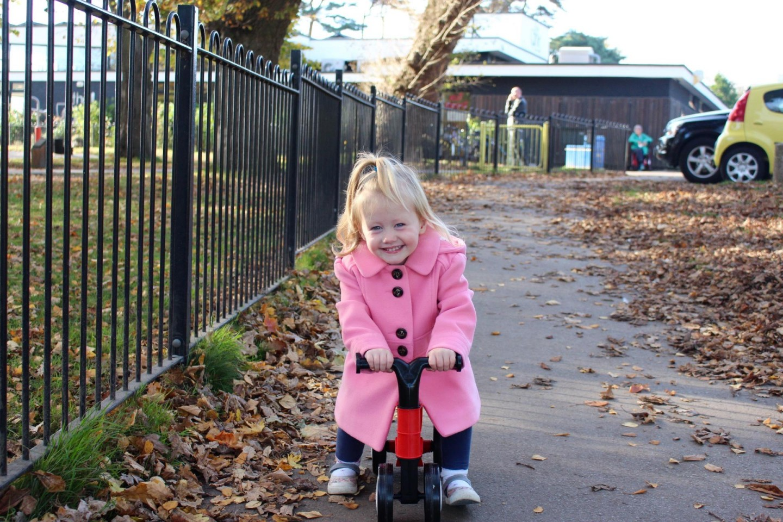 Toddle Bike 2