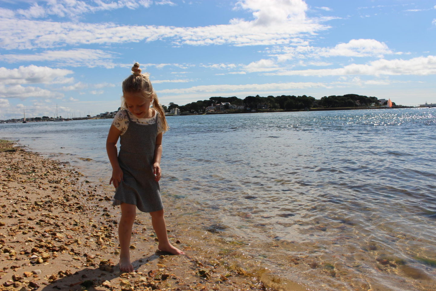 A guide to the best beaches in Dorset - brownsea island